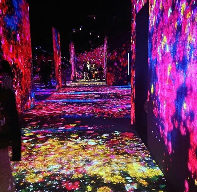 TeamLab Exhibitions