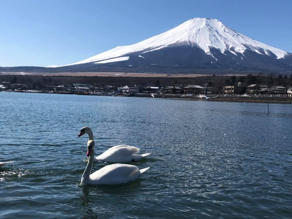 Yamanashi Fujisan World Heritage Center
